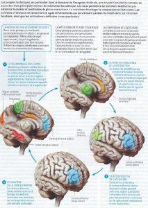 bienfaits de la méditation : article méditation et modification du cerveau Pour la science février 2015